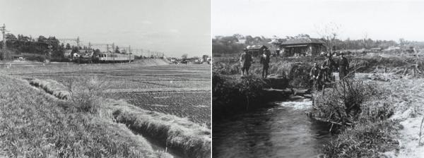 左:富士見丘駅周辺昭 和30年撮影 右:神田川の堰(永福1丁目) 昭和16年撮影<br>(杉並区立郷土博物館所蔵)
