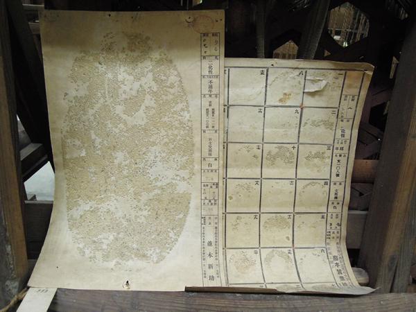 2種類の蚕種紙。サイズはA3用紙くらい