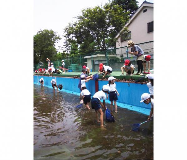 杉並第七小学校の活動風景