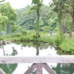 森と湖沼が豊かな自然を織りなす北塩原村