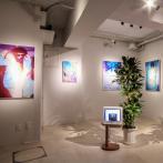 絵画と映像を組み合わせた複合的な展示