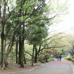 季節によって景色の変わる散歩道