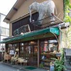 ゾウのオブジェが出迎えてくれる涼やかな店舗
