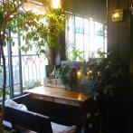 広い窓から差し込む光と鉢植えの緑の陰が心地よい空間を作る