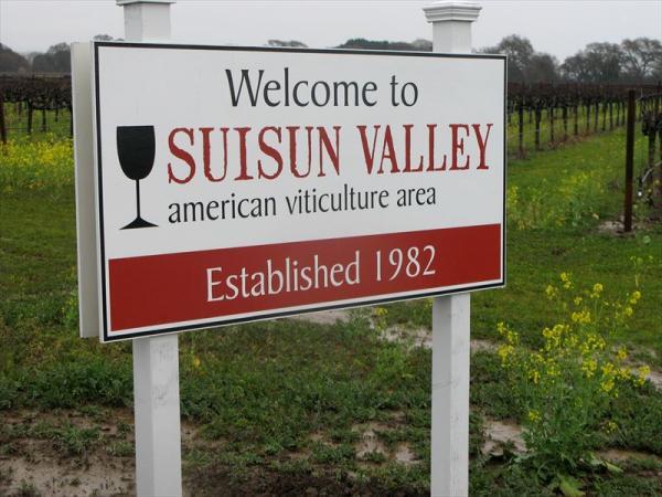 輸入元のサンフランシスコ郊外Suisun Valley(スースンバレー)(写真提供:山下さん)