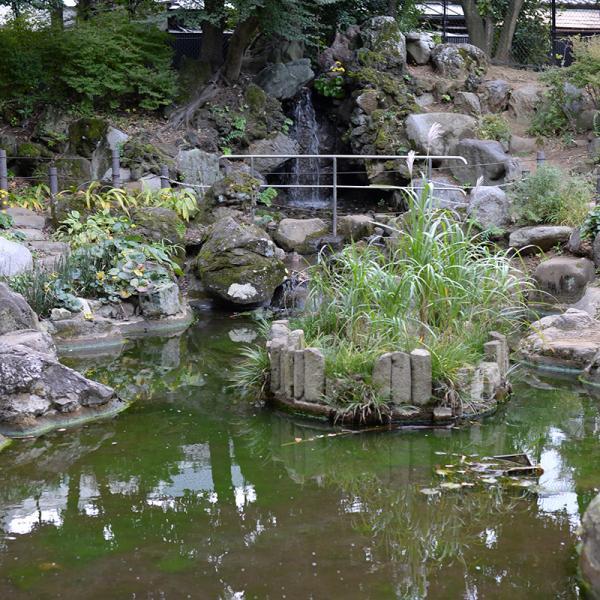 公園内にある人工池